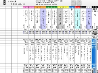 中山9R サフラン賞 2歳500万以下 牝馬戦.jpg