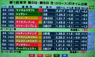 東京競馬 芝 開催日 各コースタイム結果.jpg
