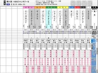 KBSファンタジーS 出走表 注目馬.jpg